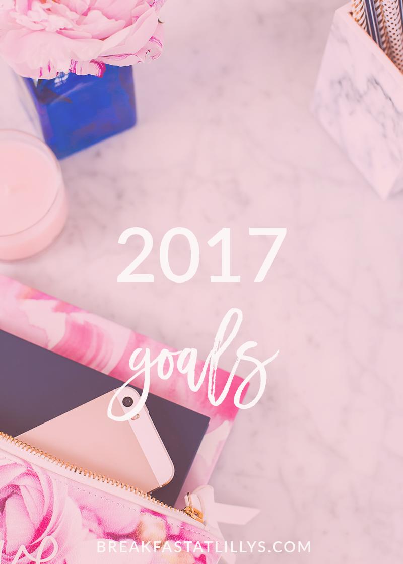 2016 Goals Recap + 2017 Goals